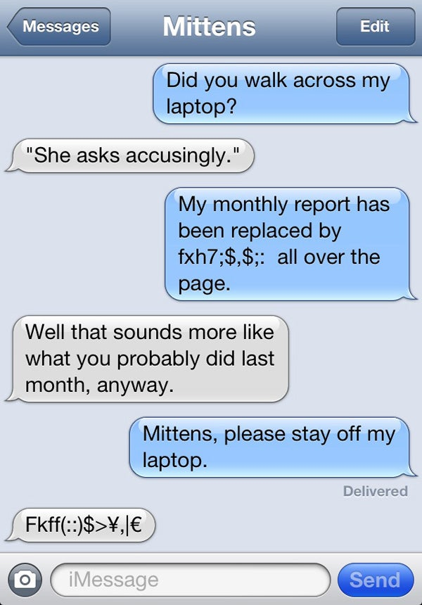 If Your Cat Can Text...Don't Give Him Your Number
