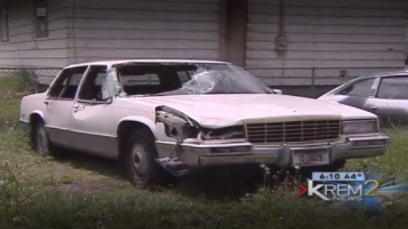 An Unlicensed, Uninsured Teen Hit A Moose With A Cadillac