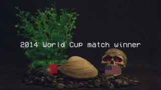 Exclusive: Psychic Clam Predicts U.S. World Cup Victory Over Portugal