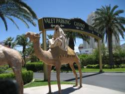 Plaster Camel Casino To Be Next Celeb Hot Spot