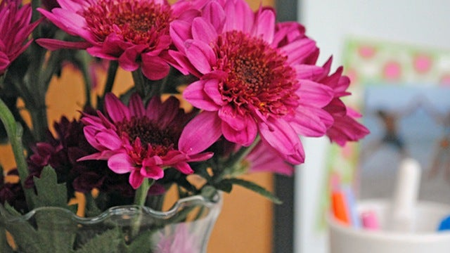 Bring Flowers into the Office to Increase Productivity and Reduce Anxiety