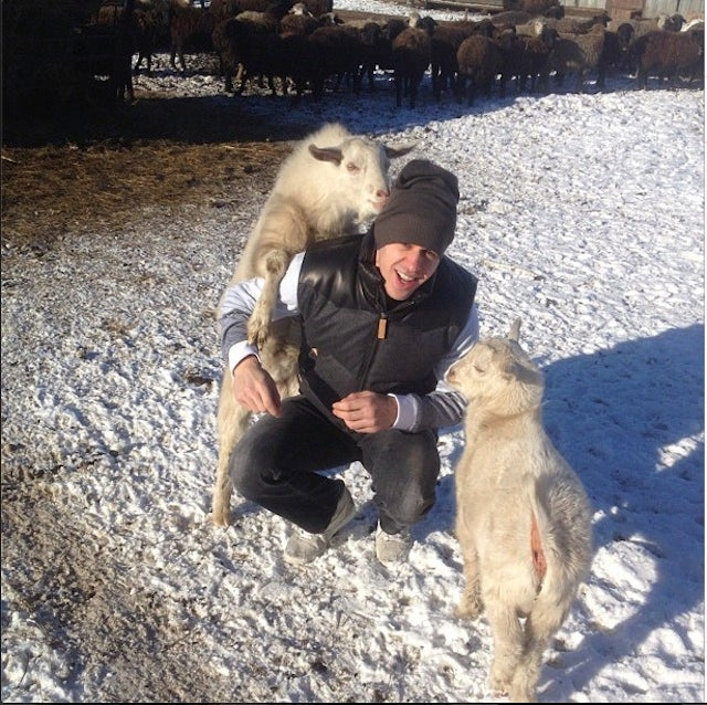 Evgeni Malkin Instagram Best