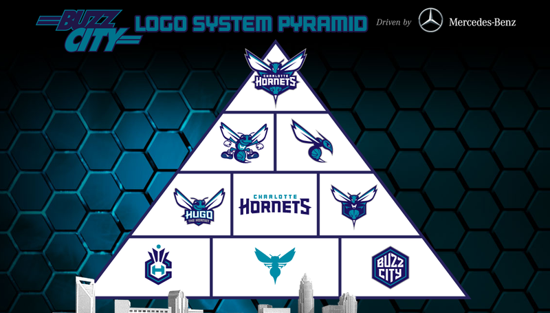 Look At The New Charlotte Hornets Logo
