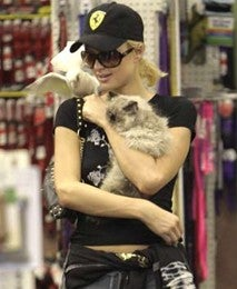 Paris Hilton Is A Cat Killer