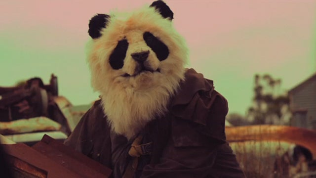 The Last Panda in a Post-Apocalyptic Wasteland