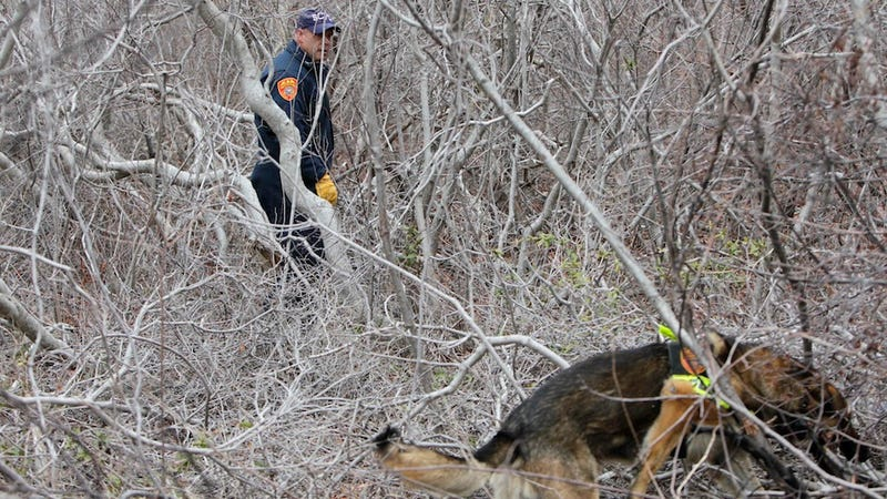 Police Find More Human Remains on Long Island