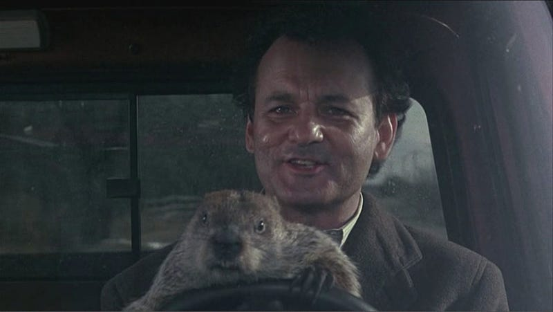 Groundhog Day, I Fucking Hate You