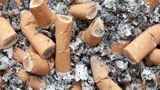 Smoking Will 'Rot' Your Brain