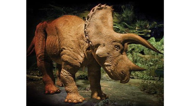 Scare Children With This Ownable Animatronic Triceratops