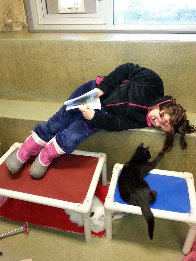 Kitties. Books. Kitties With Books, and Also Children.