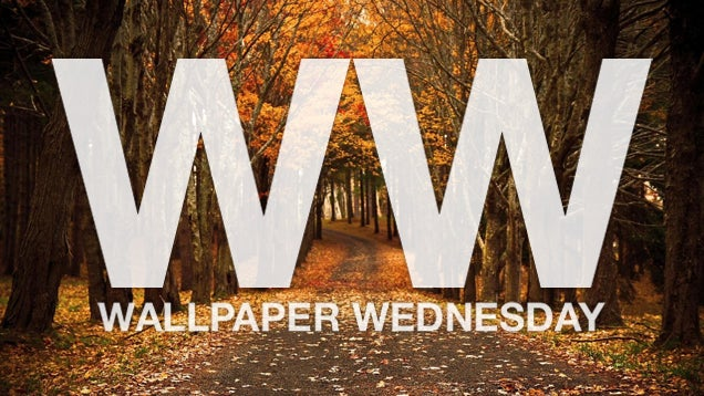 """Go """"Leaf Peeping"""" with These Autumn Wallpapers"""