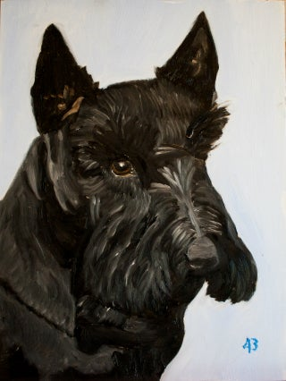 Barney Bush Dies at 84 (in Dog Years)