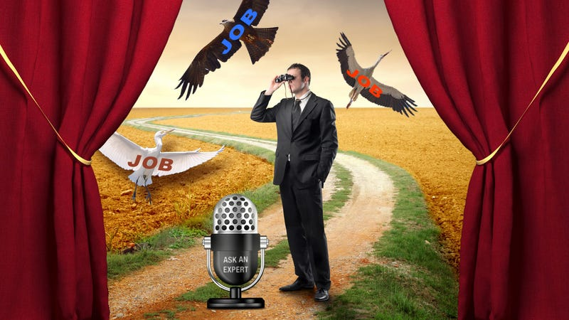 Ask an Expert: All About the Job Search Process