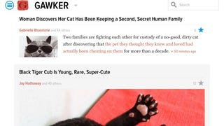 Gawker's new strategy? All cats, all the time!