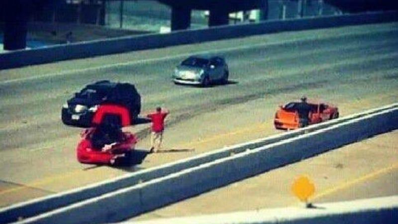 Act Of Bull-On-Horse Violence Claims Lamborghini And Ferrari