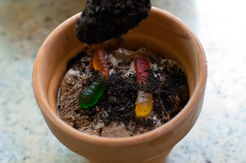Flower Pot Ice Cream is my Personal Chocolate-y, Worm-Filled Fantasy