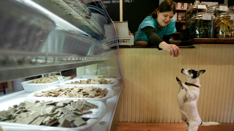 Organic Pet Food Is Becoming a Thing Because Americans Humanize Pets