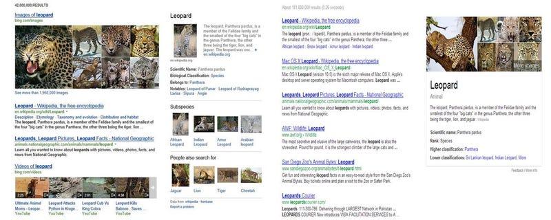 ¿Google o Bing? 15 años después seguimos buceando entre enlaces azules