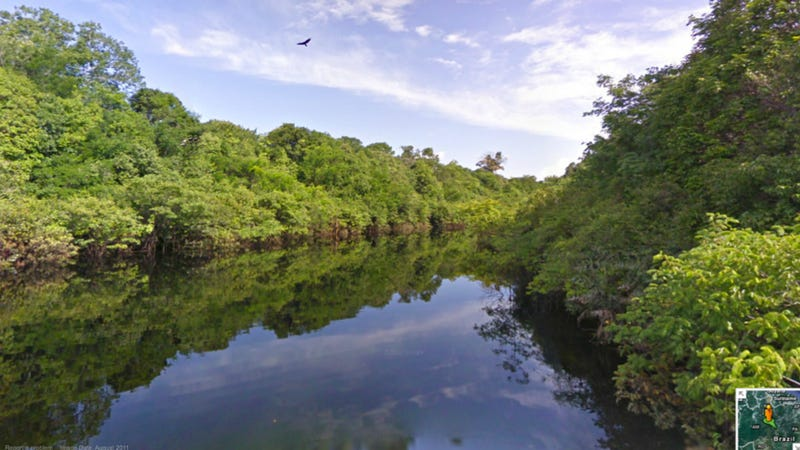 Google Street View is now available for the Amazon rainforest