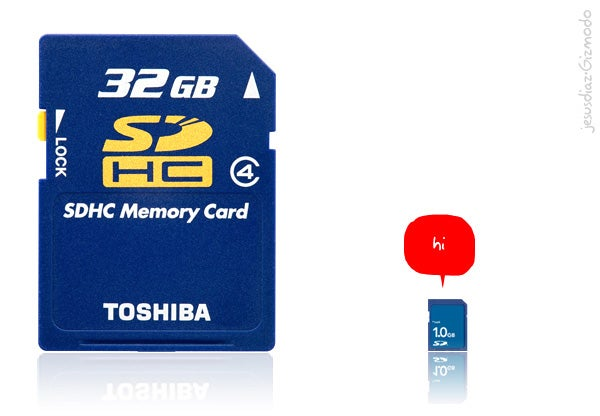 This is What a 32GB SD Card Would Look Like if Scaled To Size...pi