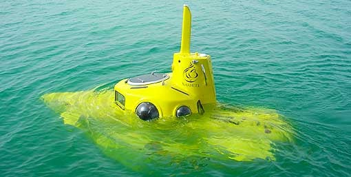 Microsoft's Paul Allen's $12 Million Yellow Submarine