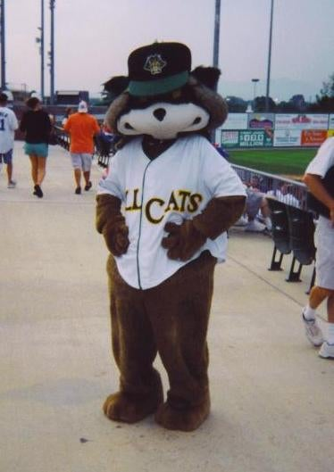 Cultural Oddsmaker: Who's the Next Minor League Mascot to Get All Dirty?