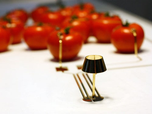 Miniature LED Lamp Powered By Fruit (Or Is It Vegetable?)