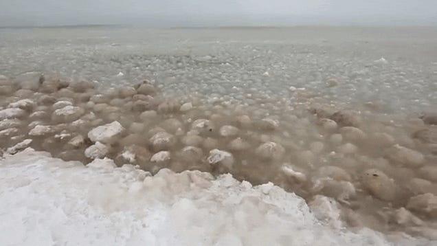 Giant ice balls in Lake Michigan look like dirty alien eggs hatching