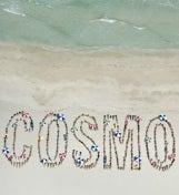 Cosmo's Miami Beach Bikini Bash