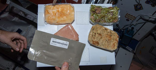 This Is What Astronauts Will Eat For Thanksgiving