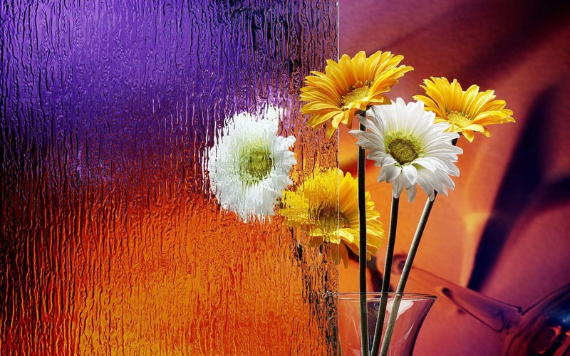 See Clearly with These Gorgeous Glass Wallpapers