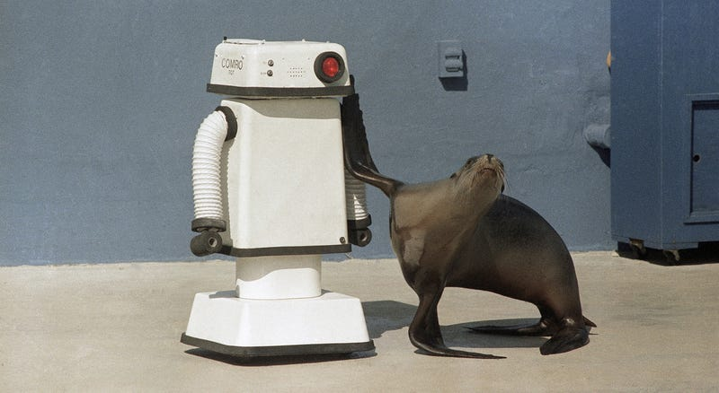 Betamax and chill but one of you is a robot and the other is a seal