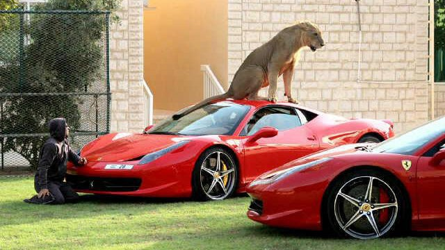 Ferrari's New Security System: It's A Lion