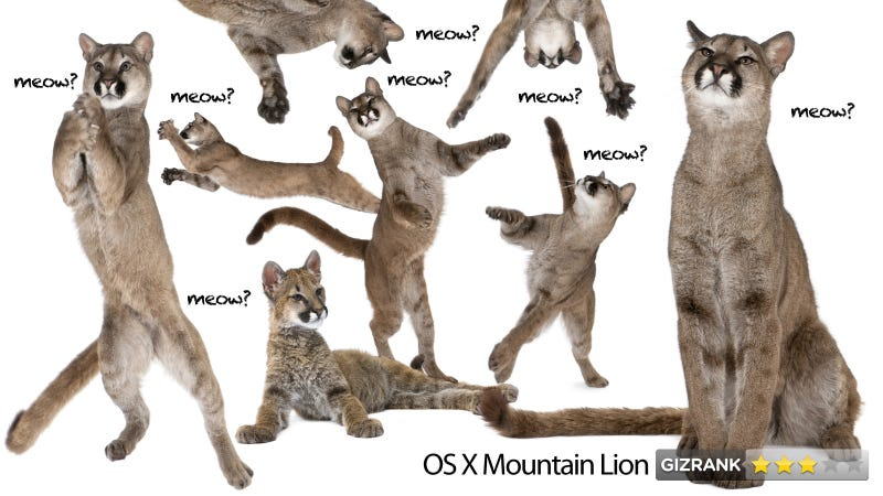 Mountain Lion Review: OS X Needs a New Vision