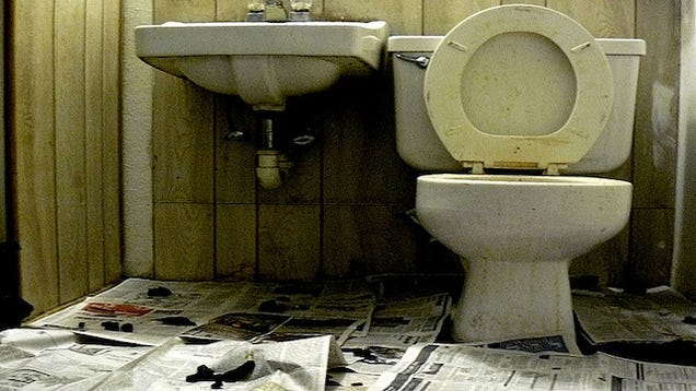 6 tools to make your disgusting bathroom pristine again for Disgusting bathroom pictures
