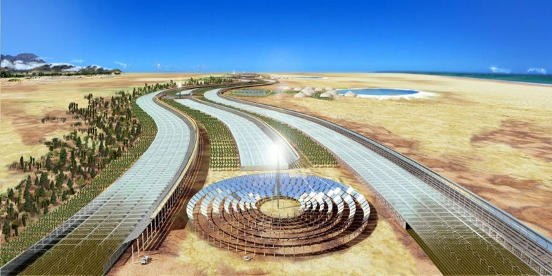 Plans to Convert the Sahara Into a Forest