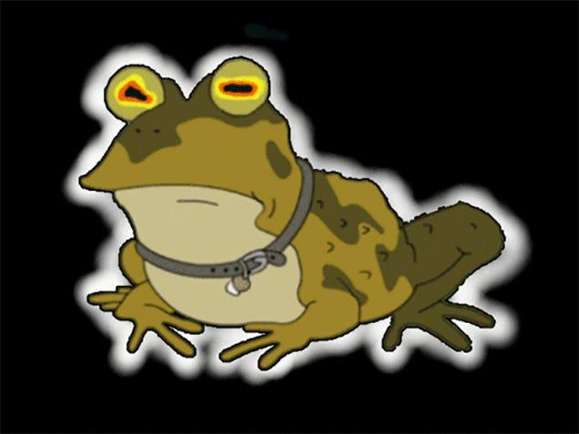Slow-Motion Bullfrogs Look Super Dramatic