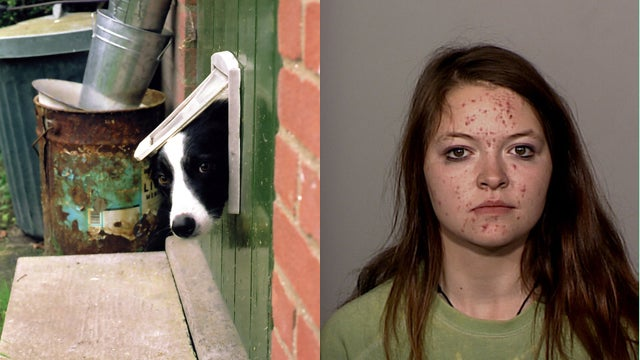 Babysitter Crawls Through Doggy Door to Steal for Her 'Porn Addiction'