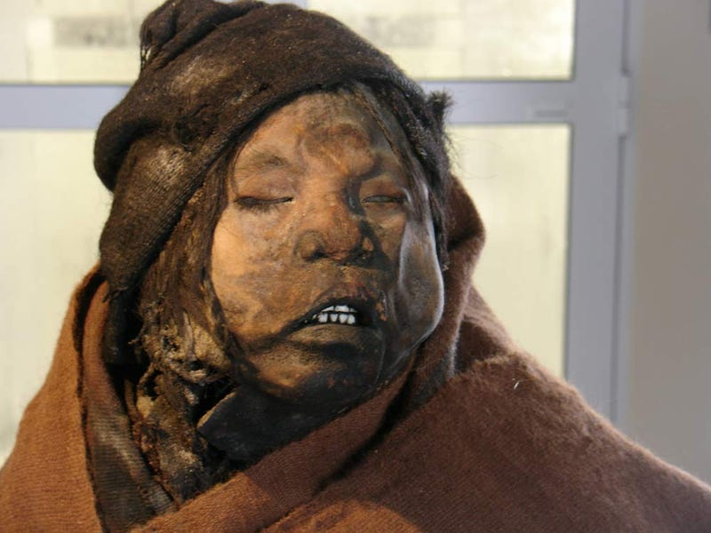 Inca Children Were Drunk And Stoned Before Ritual Sacrifice