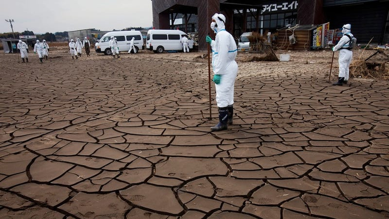 Japan's New Wasteland