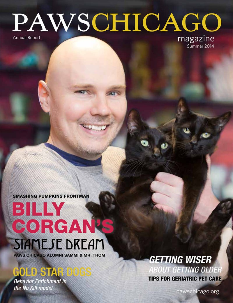 Behold Billy Corgan on the Cover of PAWS Chicago