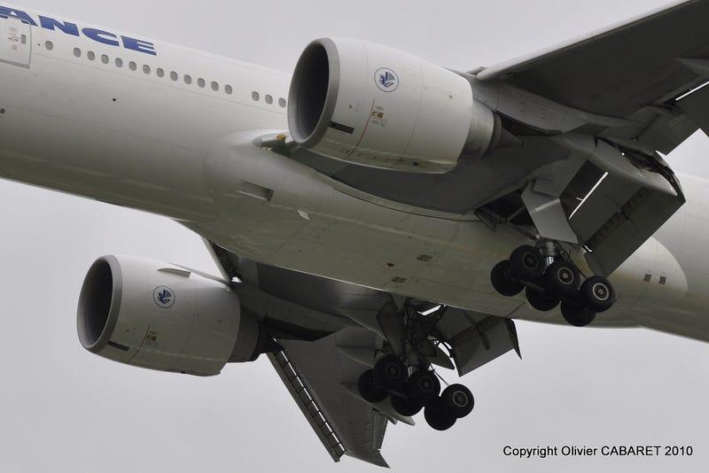 Why Do Airplane Stowaways Almost Always Die?