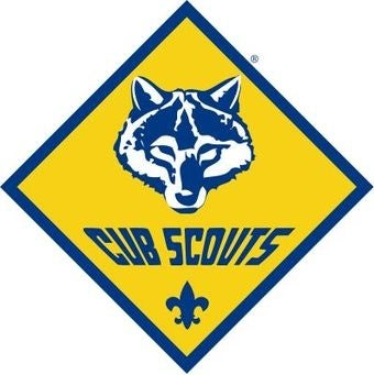 The Cub Scouts Get Video Game Badges