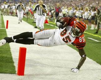 NFL Season Preview: Cincinnati Bengals