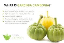 Garcinia Cambogia Results