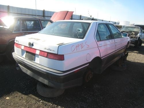 Alfa Romeo 164 Survives Alfa's Departure From America, Can't Survive Cash For Clunkers