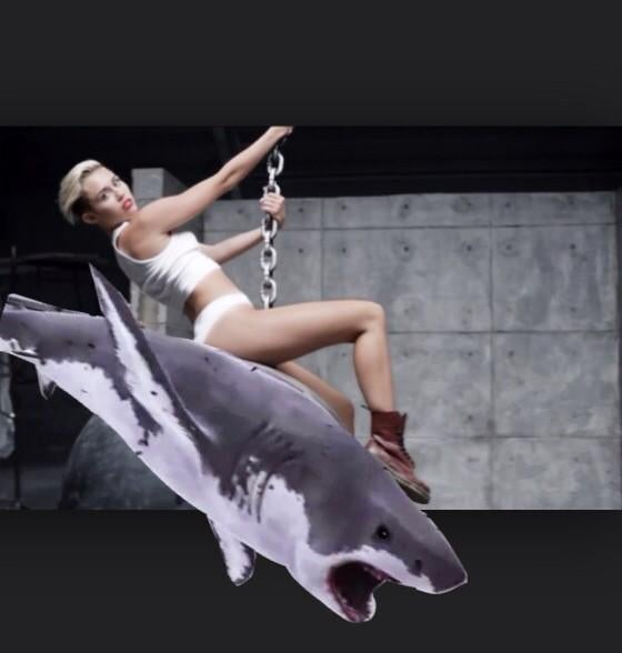 I CAME IN LIKE A SHARKNADO