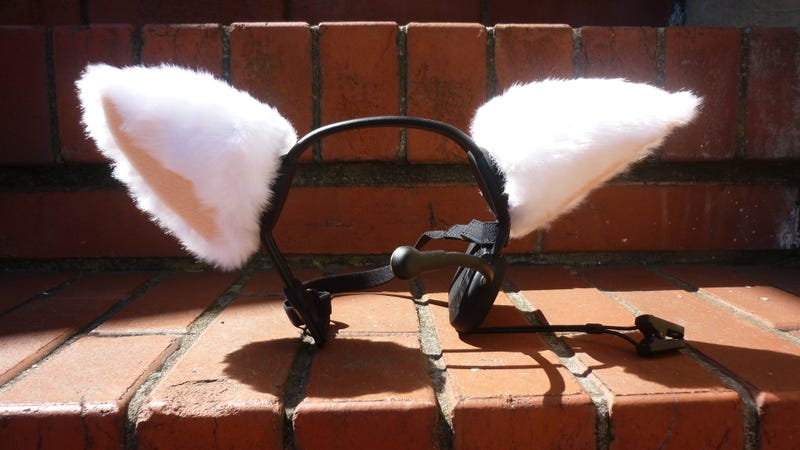 Necomimi Animatronic Ears Gallery