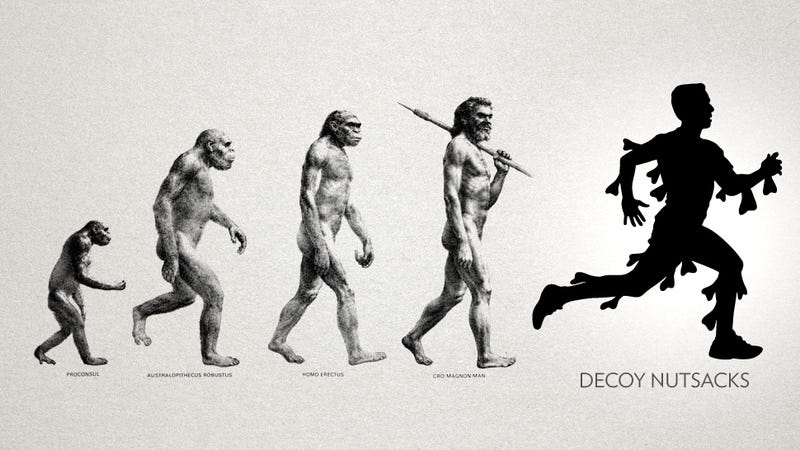 A Few Suggestions for the Next Phase of Ballsack Evolution