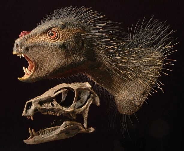 This newly discovered tiny dinosaur is adorably terrifying